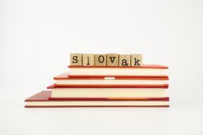 V školách s maďarským vyučovacím jazykom ministerstvo odporúča učiť slovenčinu ako cudzí jazyk